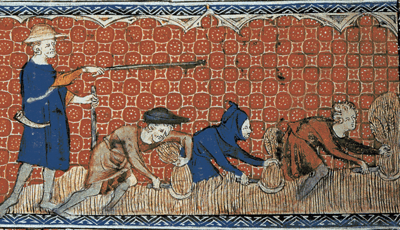 An analysis of black plague which lived during medieval times in england